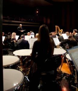 Symphony Orchestra_0